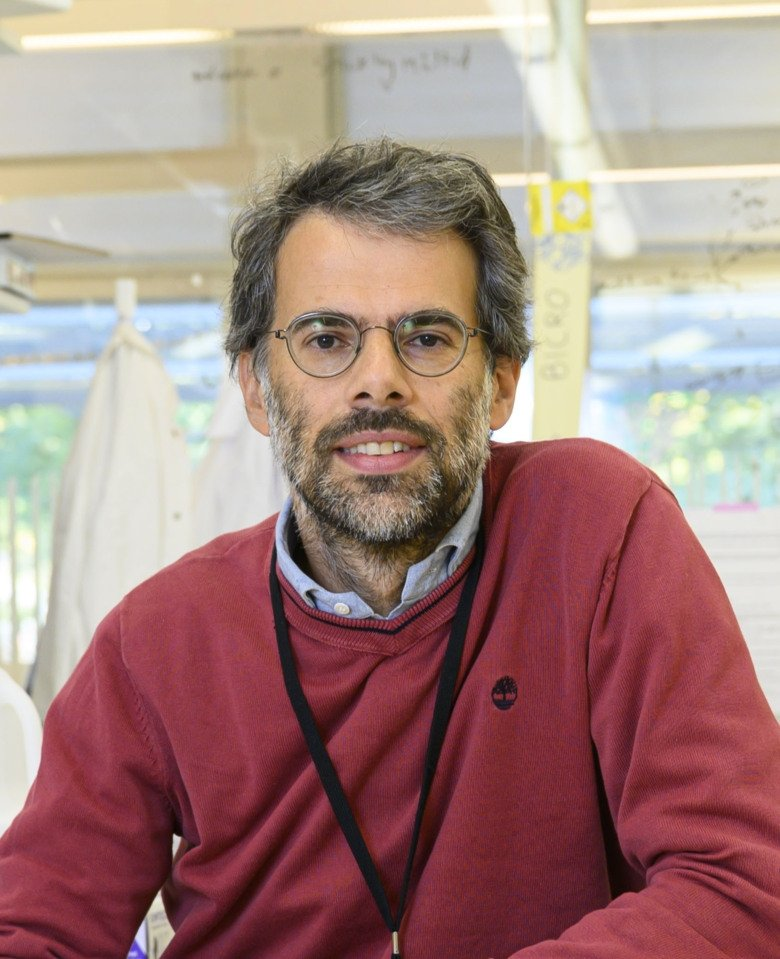 Nicola Crosetto, senior researcher at the Department of Medical Biochemistry and Biophysics